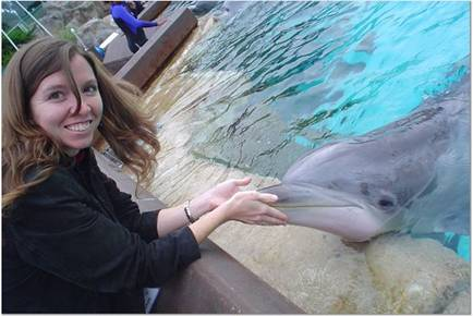 Dolphin Encounter gives you the personal quality time you've always wanted.