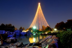 the tree of lights will rock 'n' roll this season