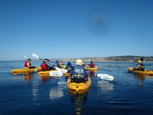 OEX Kayak Tour in La Jolla