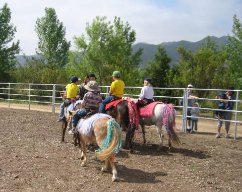 Mission Trails Pony Rides