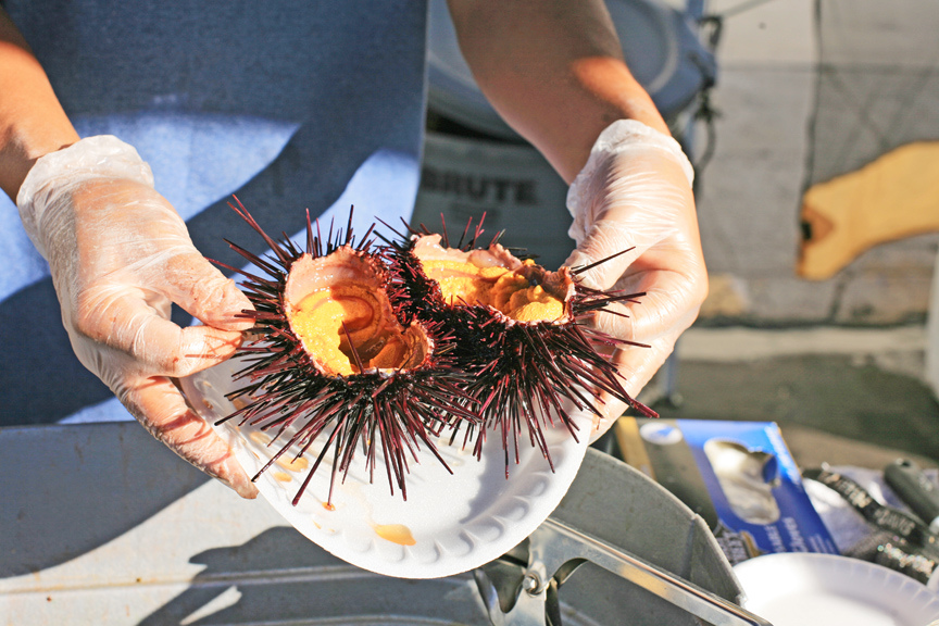 Uni served at Little Italy Farmers Market in San Diego
