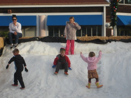Children playing on Snow Mountain at the Coronado Ferry Landing