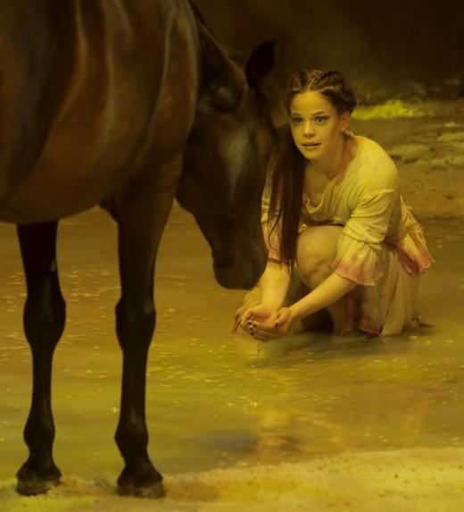 Human and Horse - Cavalia