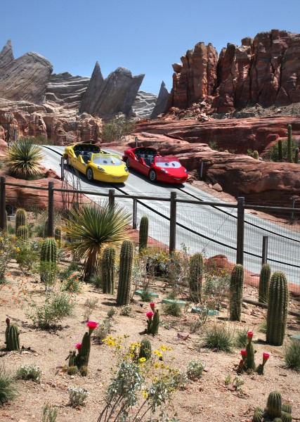 Cars Land Radiator Springs Racers