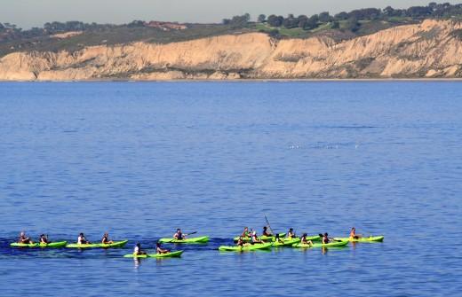 Kayakers in La Jolla