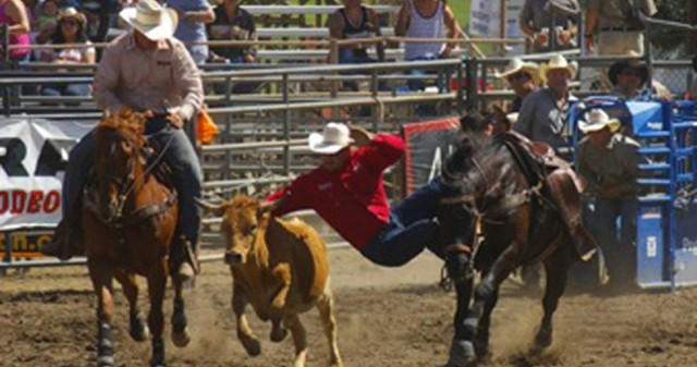 Ramona Rodeo - Top Things to Do in San Diego