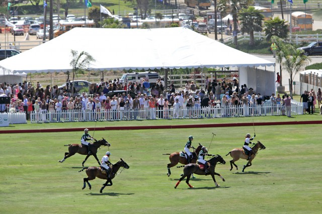 Polo Match at the San Diego Polo Club