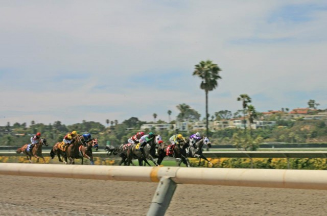Get close and cheer loudly as your horse passes by at the Del Mar Racetrack in San Diego.