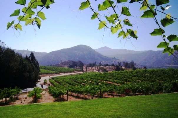 San Diego winery tours