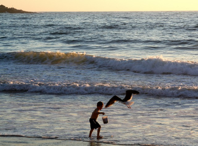 Playing at the Beach - Free Things to Do in San Diego