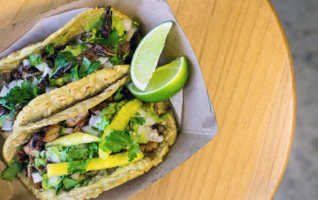 Tacos with handmade corn tortillas are being served up with or without crickets at Tacos Perla in North Park San Diego.