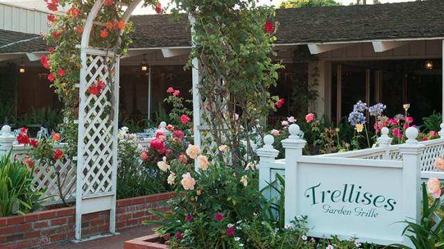 Trellises Garden Grille at Town & Country Resort