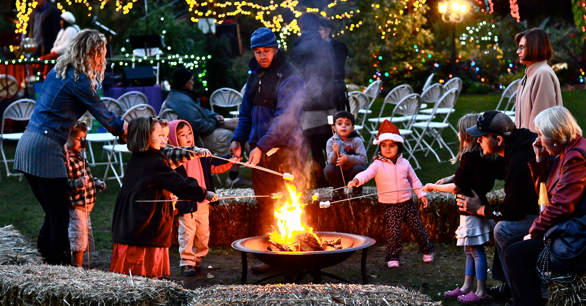 garden-of-lights-smores-1200x627