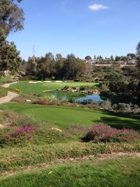 Park Hyatt Aviara Golf Club Hole 14