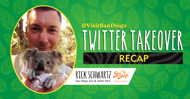 Twitter Takeover Recap with Rick Schwartz