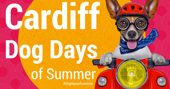 Cardiff Dog Days of Summer