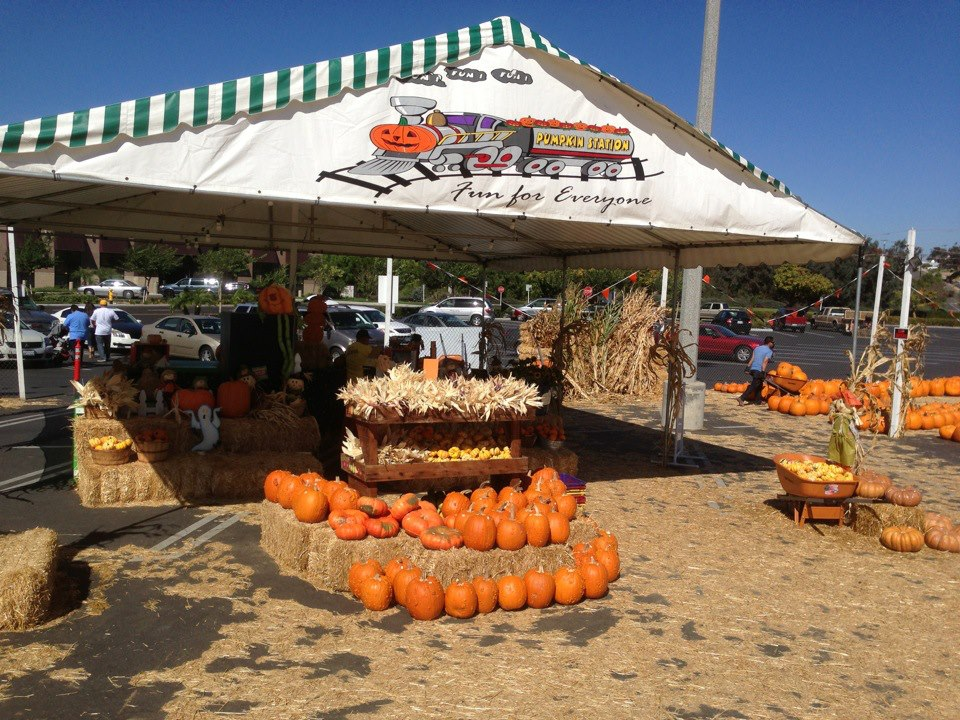 Pumpkin Station Pumpkin Patches