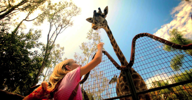 kids-free-girl-giraffe-1200x630