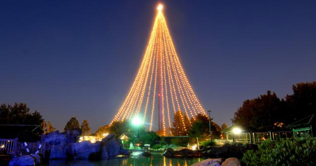 Holiday-Skytower-Tree-1200x630