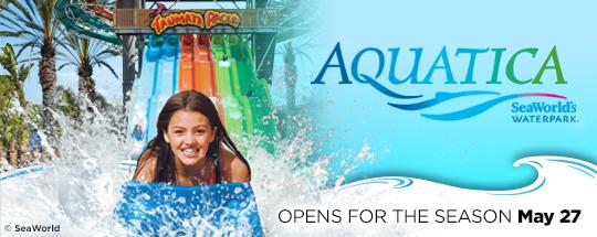 Aquatica San Diego - Top Things to Do