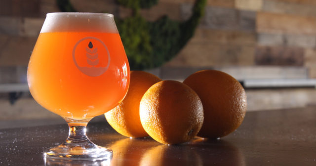 orange-cream-ale-pure-project-1200x630
