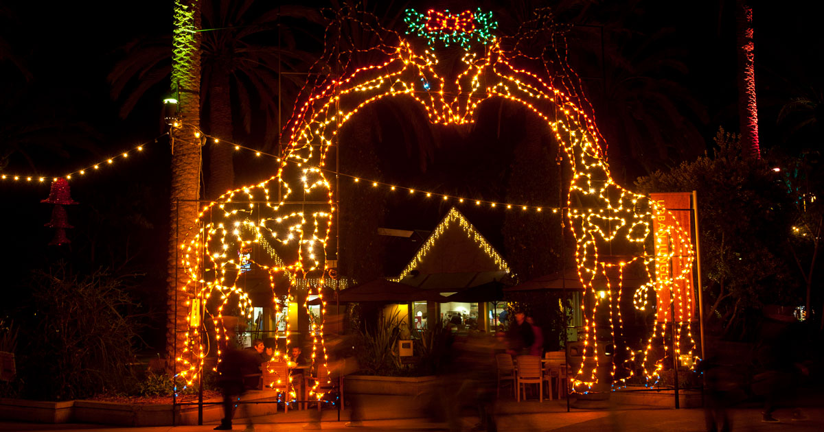 Holiday Attraction Action - Jungle Bells at the San Diego Zoo