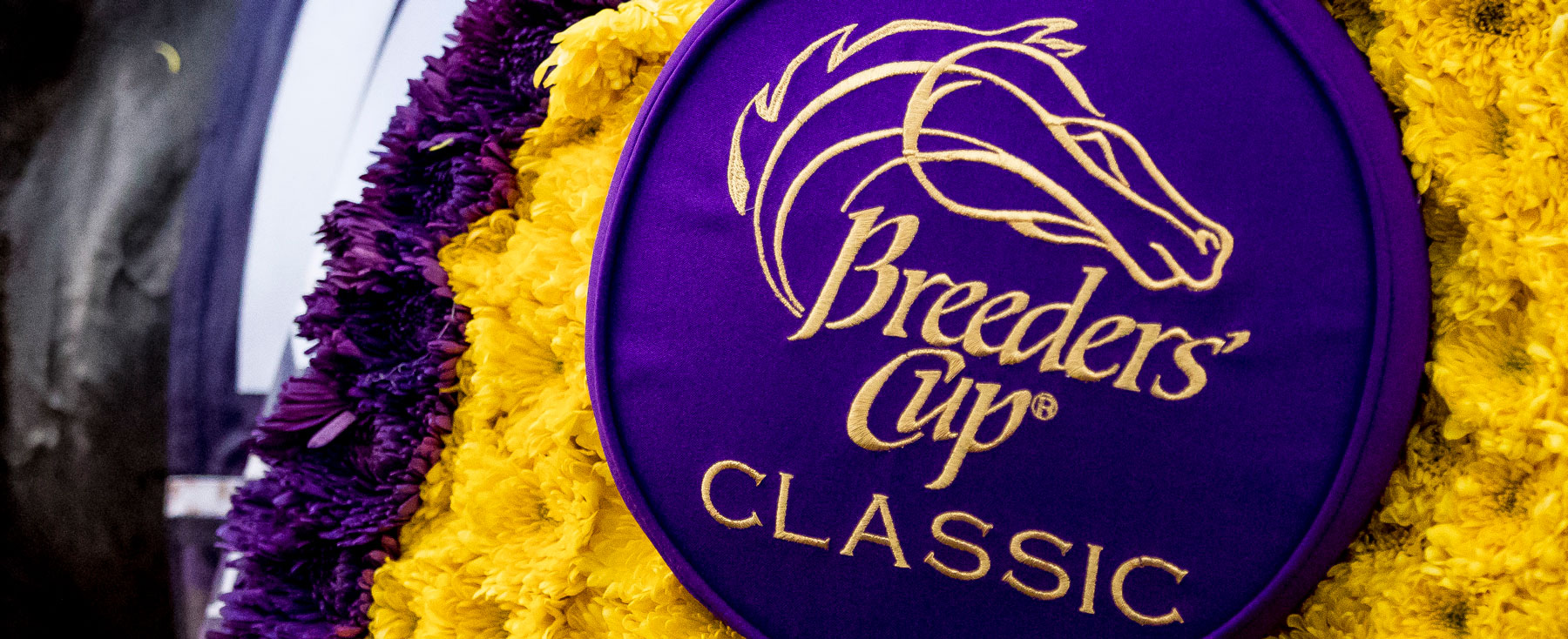 2017 Breeders' Cup World Championship