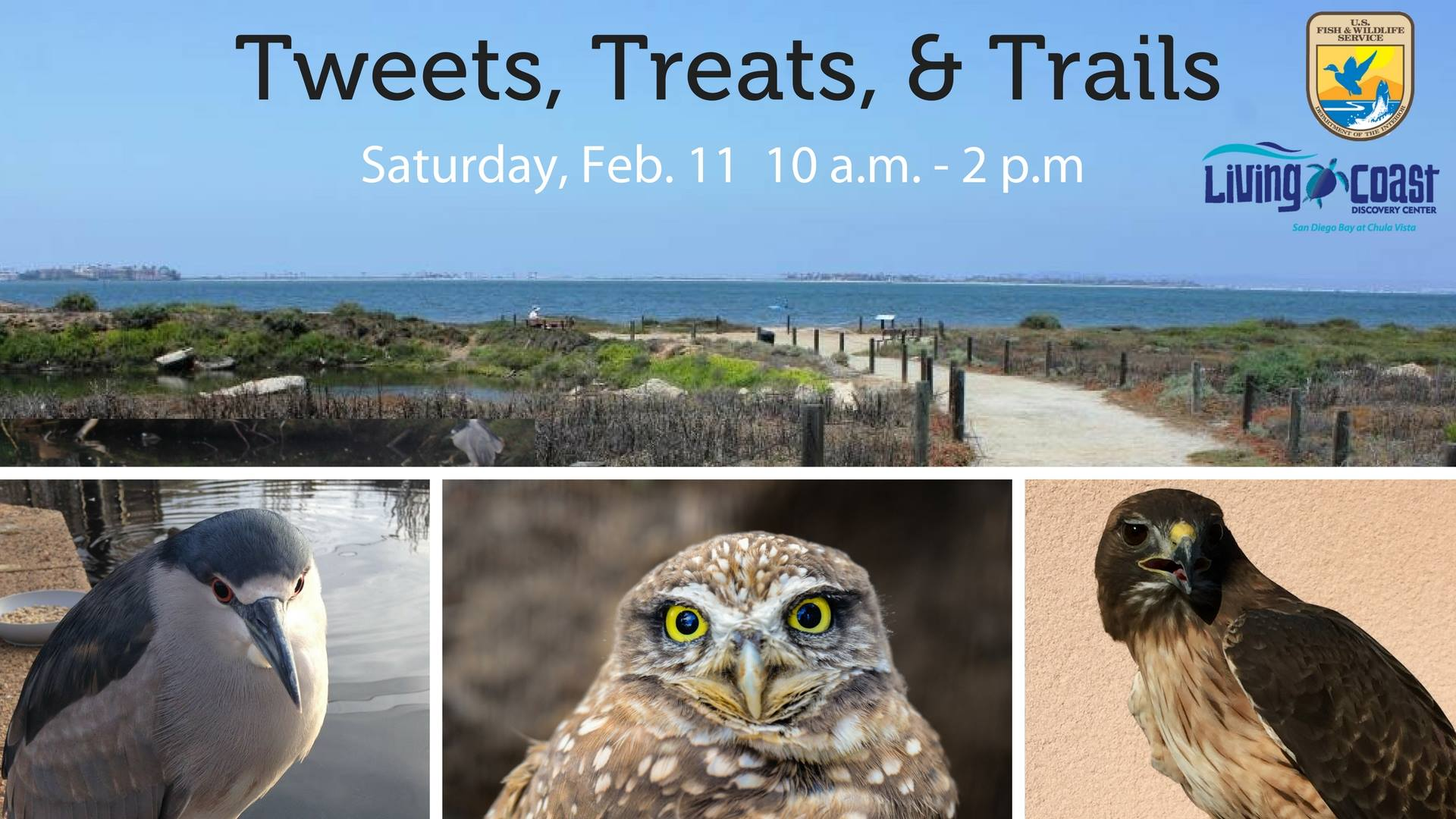 Tweets, Treats, and Trails
