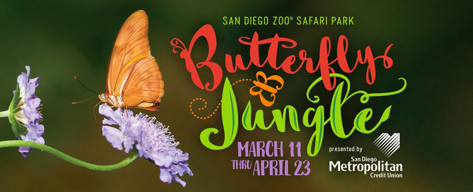 Butterfly Jungle - San Diego Zoo Safari Park