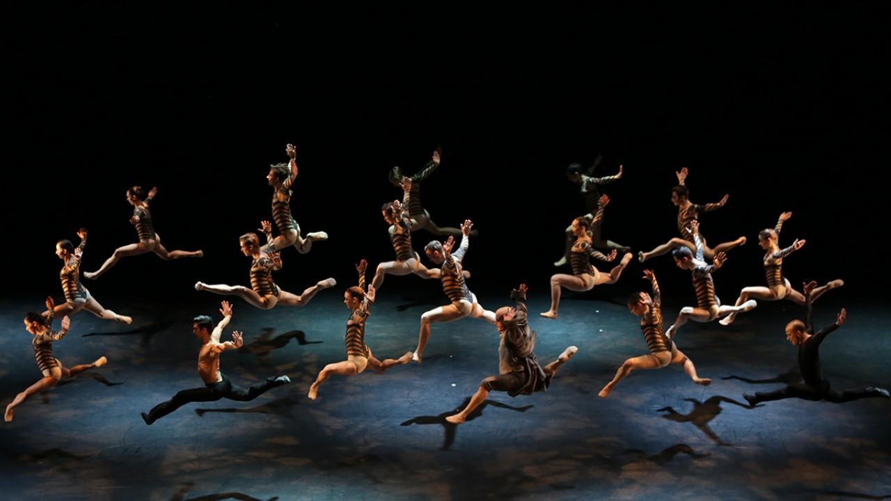 Malandain Ballet Biarritz's Beauty and the Beast