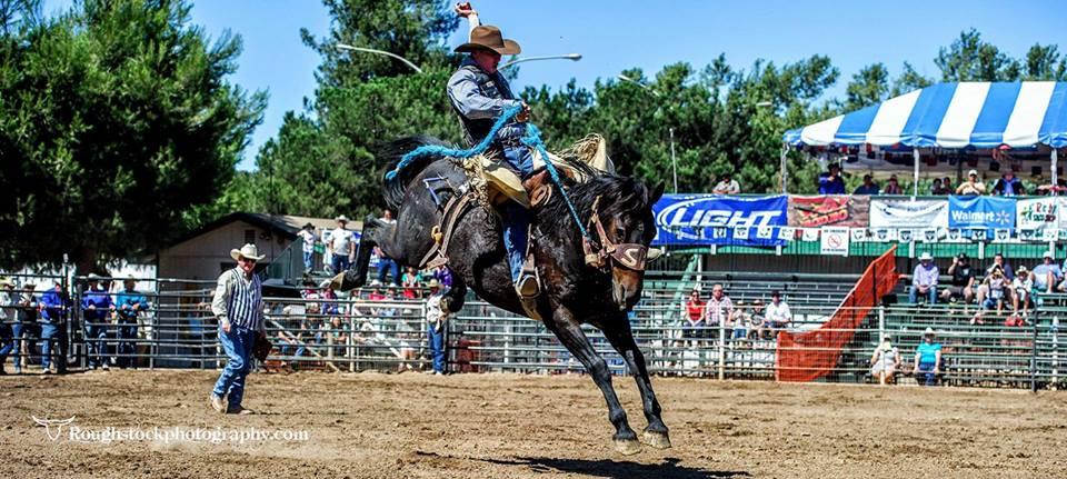Poway Rodeo