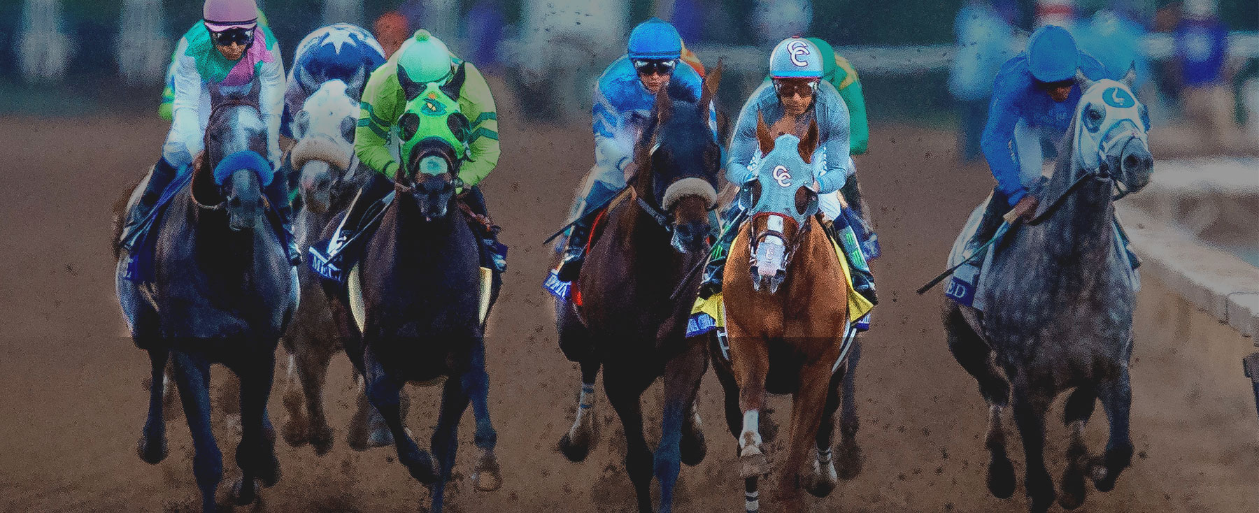 2017 Breeders' Cup World Championships
