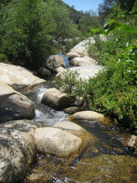 5 To Try Camping In San Diego S East County