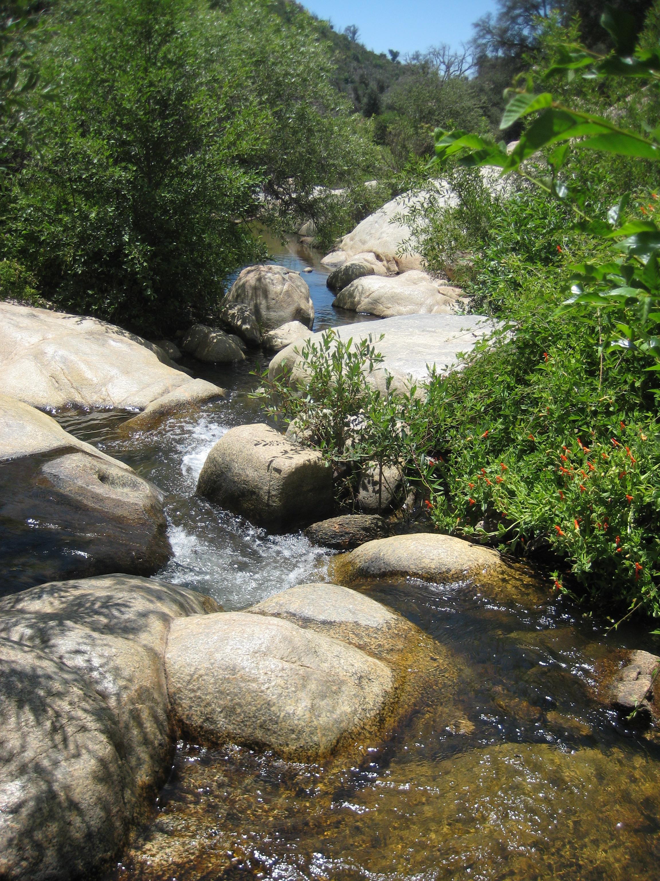 Cuyamaca Rancho State Park - San Diego Travel Blog