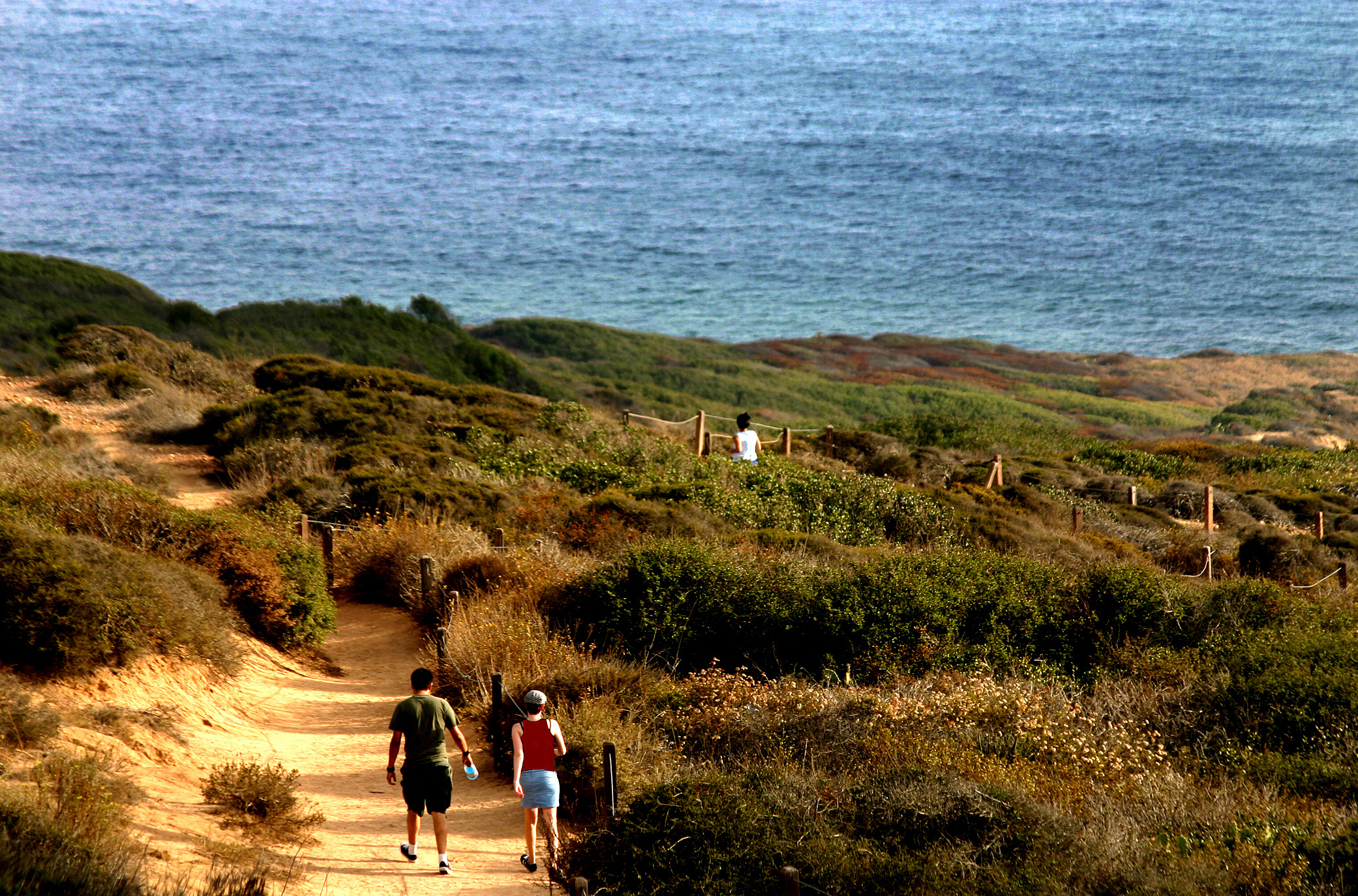 Hiking trough La Jolla's Torrey Pines State Park
