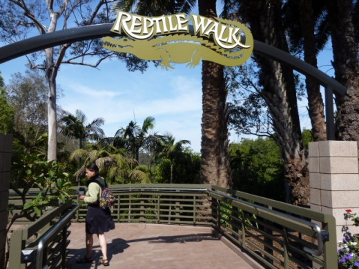 San Diego Zoo Reptile Walk Entrance