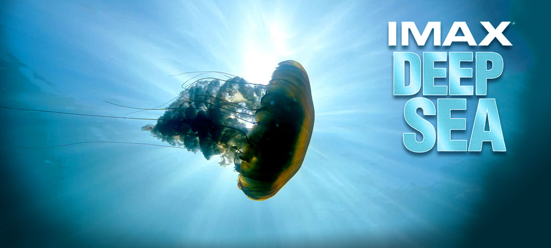 deep sea imax movie at the reuben h fleet science center balboa park san diego
