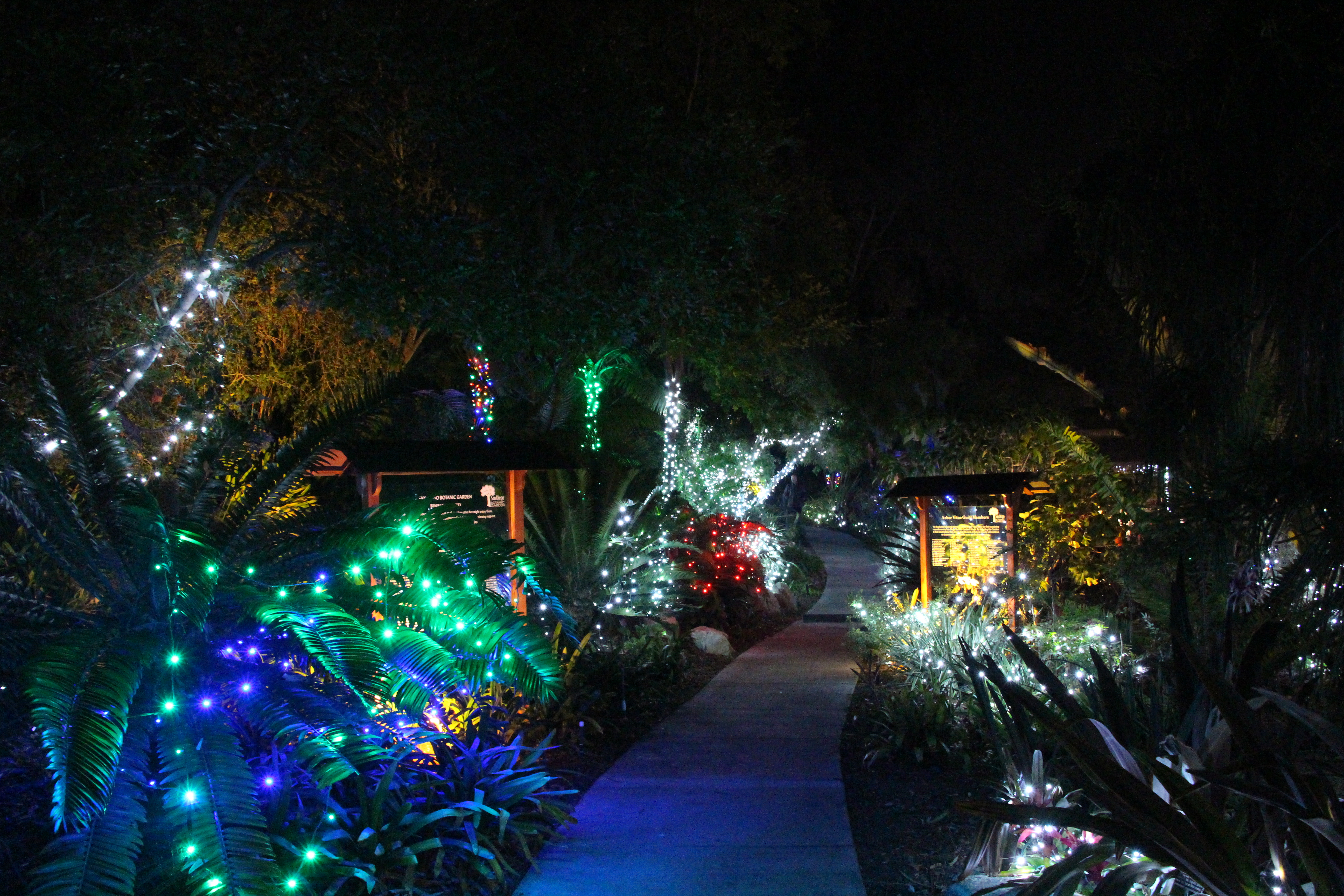San Diego Botanic Gardens' Garden of Lights