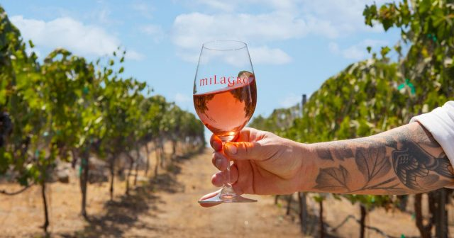 Hot 'Hoods: San Diego's Wine Trail Through Julian and Ramona