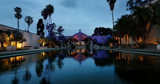 Lily Pond - Balboa Park