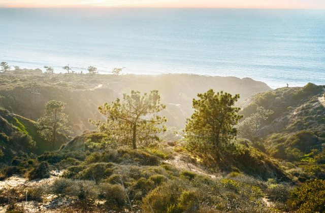 Torrey Pines - Hot Hoods Del Mar & Carmel Valley