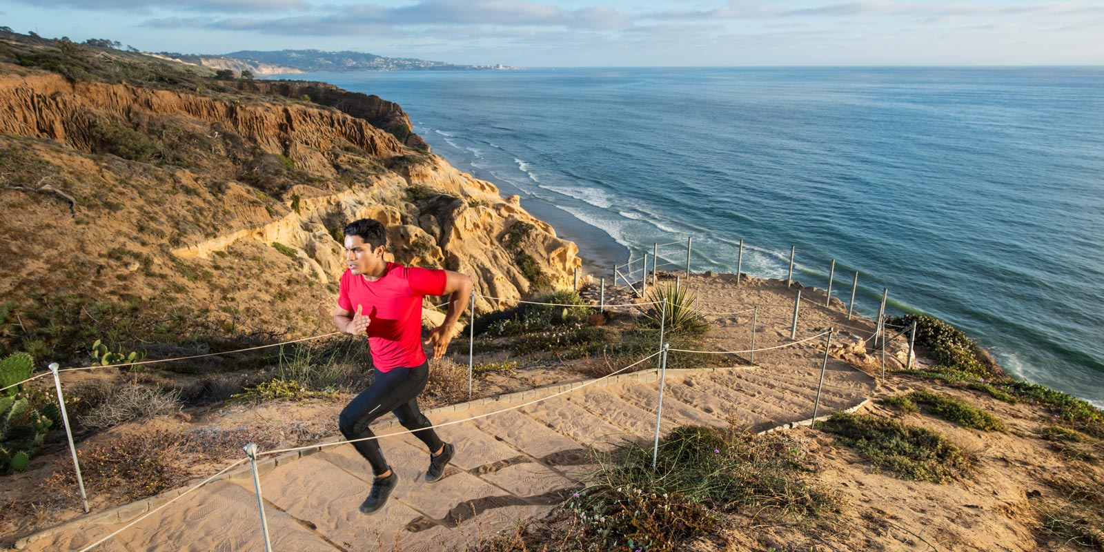 Run the trails of Torrey Pines State Natural Reserve